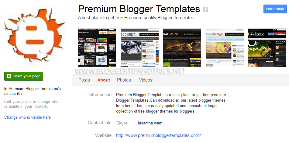PBTemplates Google Plus Page