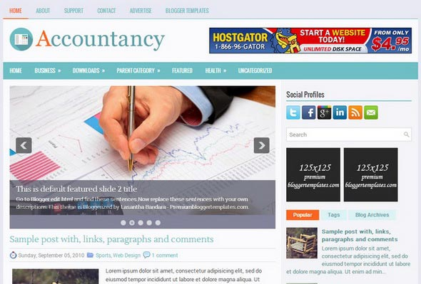 Accountancy Blogger Template
