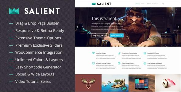 Salient - Responsive Multi-Purpose WordPress Theme
