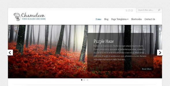 Chameleon - WordPress Theme