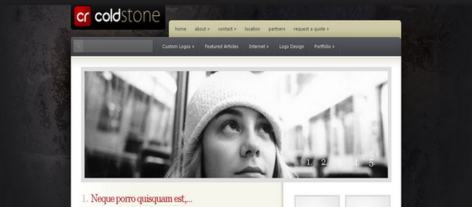 ColdStone - WordPress Theme