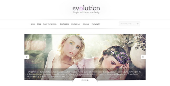 Evolution - Responsive WordPress Theme