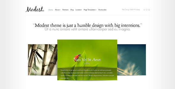Modest - WordPress Theme