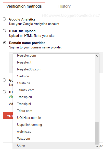 Select Other from Domain Name Provider