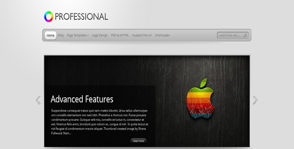 TheProfessional - WordPress Theme