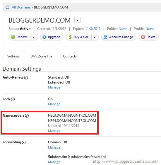 GoDaddy Domain Name Details