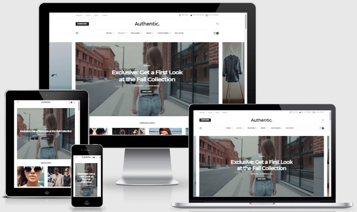 Authentic WordPress Theme