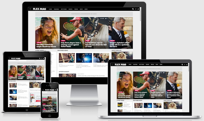 Flex Mag WordPress Theme