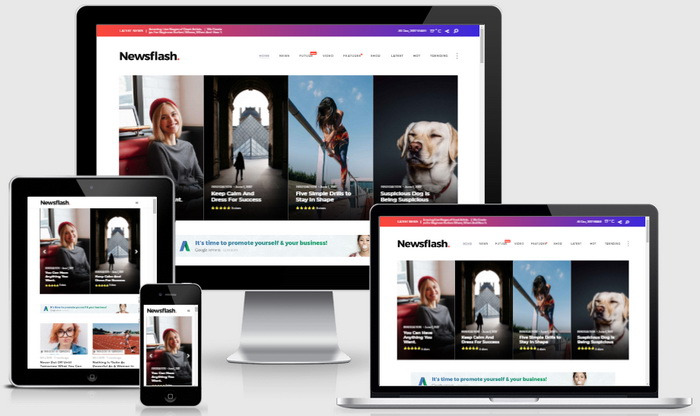 Newsflash WordPress Theme