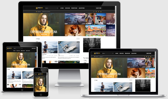 True Mag WordPress Theme